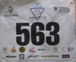Acworth Bib