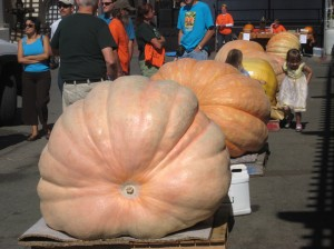 Harvest Fair 10k (There was also a giant pumpkin contest.)